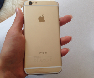 apple, girly, and gold image