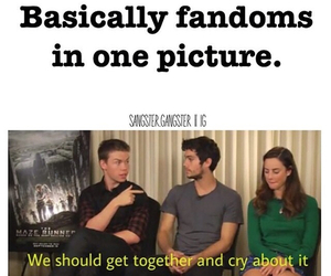fandom, funny, and the maze runner image
