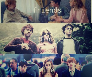 harry potter, ronald weasly, and friends image