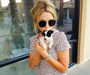 ashley benson, dog, and puppy image