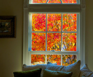 autumn, window, and home image