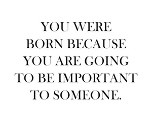 quotes, important, and born image