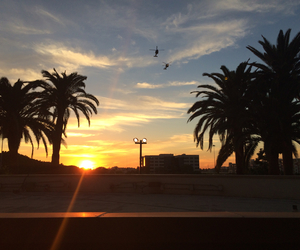helicopter, inspire, and palm trees image