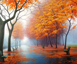 autumn, tree, and orange image