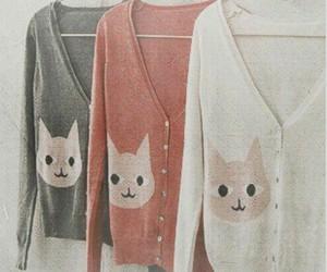 cat, fashion, and cardigan image