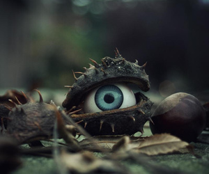 eye, creepy, and Halloween image
