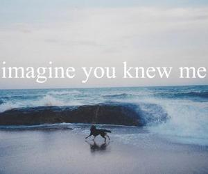 beach, imagine, and know image