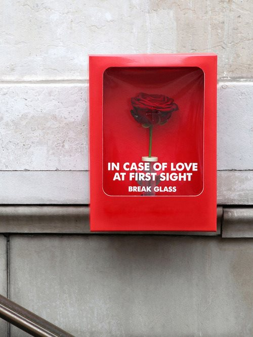 emergency, flower, and love image