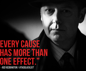red, the blacklist, and reddington image
