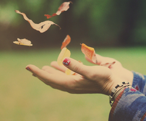 autumn, fall, and hands image