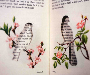 bird, book, and flowers image