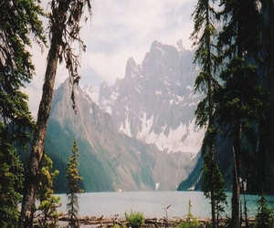 nature, mountains, and tree image