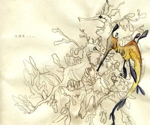 australian, dragon, and watercolor image