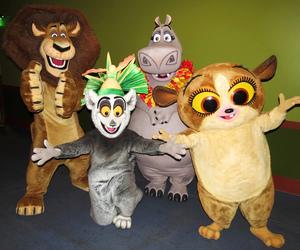 hippopotamus, lemur, and lion image