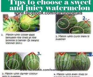 diy, watermelon, and fruit image