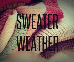 sweater, weather, and autumn image