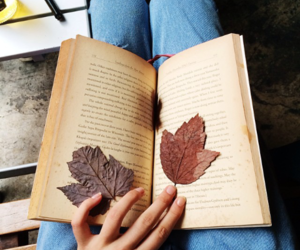 book, autumn, and love image