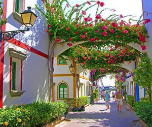 canary islands and spain image