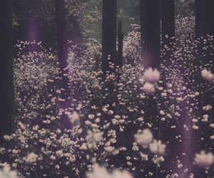 flowers, forest, and pale image