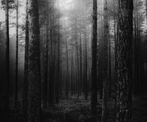 b&w, black and white, and creepy image