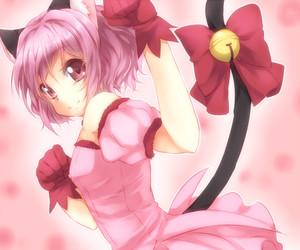 anime, tokyo mew mew, and mew mew power image