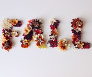autumn, fall, and bloom image