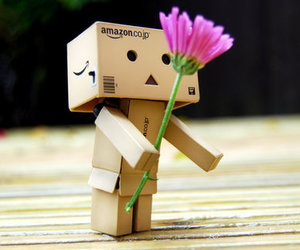flowers and danbo image