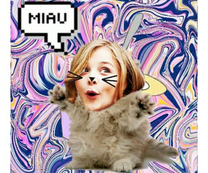 cat, funny, and miau image