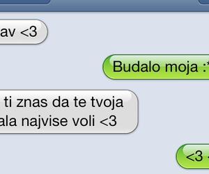 balkan, tekst, and bosna image