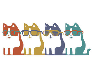 cats, colorful, and glasses image