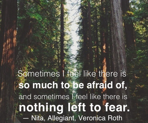 fear, book quote, and insurgent image