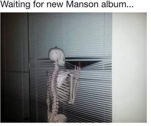 funny and Marilyn Manson image