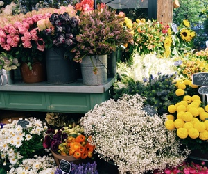 daisies, flowers, and market image