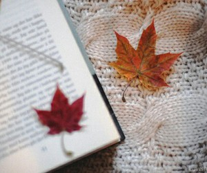 books, fall leaf, and nature image