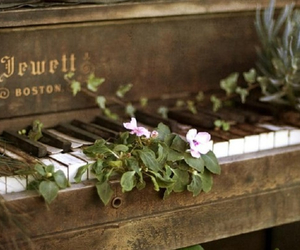 piano, vintage, and flowers image