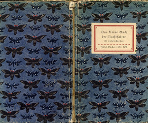 book, butterfly, and pretty image