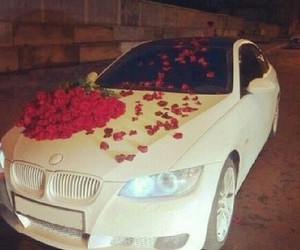 car, roses, and bmw image