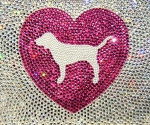 pink, Victoria's Secret, and dog image