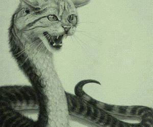 cat, snake, and animal image