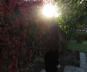 autumn, girl, and sun image