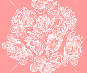 floral, flower, and peony image