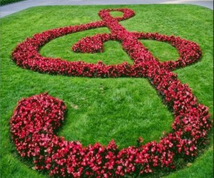bass clef, clef, and flowers image