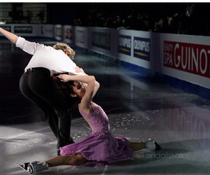 beautiful, gold, and charlie white image