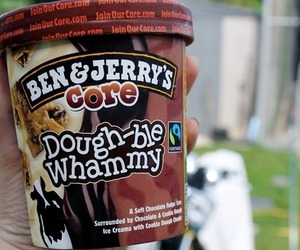yum, double whammy, and ben & jerry's image