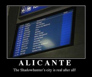 alicante and shadowhunters image