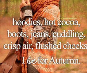 autumn, hoodies, and boots image