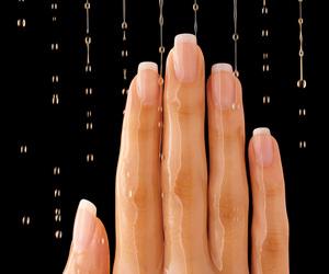 nail, oil, and nails image
