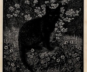 black and white, cat, and art image
