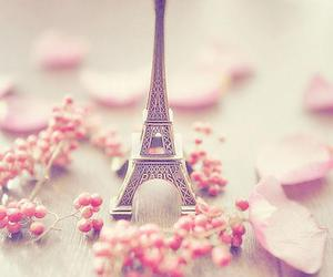 fashion, flower, and eiffel tower image
