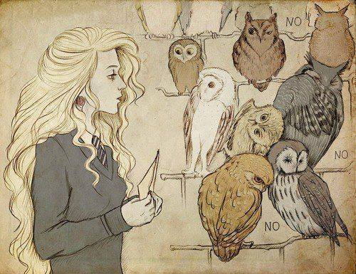 Luna Lovegood Discovered By On We Heart It